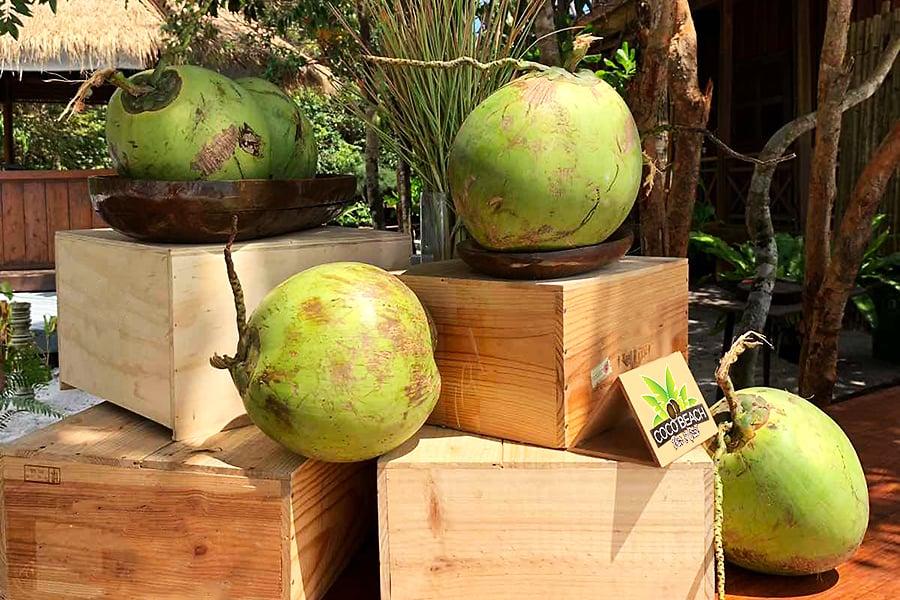 Coconuts at cocobeach bar